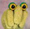 Frog Peeper